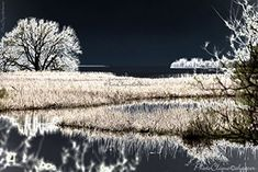 Nocturne, Fine Art Photography, Life Is Good, Wall Art, Landscape, Amazon, Beach, Water, Silver