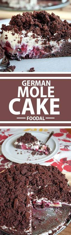 """This German Mole Cake will have you """"digging"""" for more. Chocolate, vanilla whipped cream, and fresh fruit makes this the perfect treat when you need that special something. Get the recipe now on Foodal! http://foodal.com/recipes/desserts/this-german-mole-cake-will-have-you-digging-for-more/"""