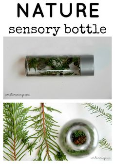 Want to bring nature discovery to your baby? Check out this nature sensory bottle for inspiration!