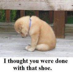 awww poor baby =(