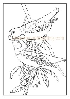 mothers day colouring pictures