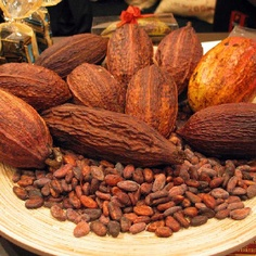 Lindt uses only superior ingredients - including the finest cocoa beans.