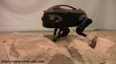LittleDog robot at USC
