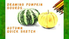 Drawing pumpkin gourds - Autumn quick sketch