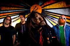 Top 12 songs by British metal/reggae band Skindred.