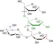 Sintesi delle proteine yahoo dating