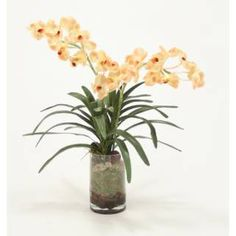 Check out the Distinctive Designs 16193 Waterlook Champagne Vanda Orchid Silk Floral Arrangement with Orchid Bark in Clear Glass priced at $200.00 at Homeclick.com.