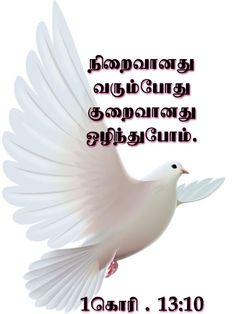 Tamil Bible Words, Jesus Photo, Bible Verses, Scripture Verses, Bible Scripture Quotes, Bible Scriptures, Scriptures