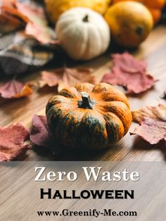 Zero Waste Halloween - Halloween is a really hard time of year for the environment. All those plastic wrapped candies, single use costumes, and rotting pumpkins really add up. That's why I decided to devise a zero waste Halloween guide that would help you Healthy Halloween, Halloween Halloween, Halloween Inspo, Really Hard, Zero Waste, Sustainable Living, Costume Ideas, Costumes, Eco Friendly