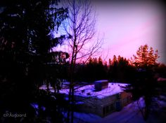 Pink - Purple Horizon during the dawn.
