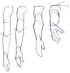 Learn To Draw People - The Female Body - Drawing On Demand - Drawing Techniques - Arm Drawing, Body Drawing, Anatomy Drawing, Anatomy Art, Drawing Poses, Arm Anatomy, How To Draw Anatomy, Fabric Drawing, Drawing Hands