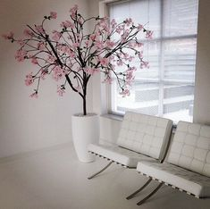 Barcelona chair - wit- white - bloesemboom