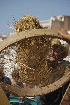Aquí es veu com els grans d'arròs passen pels filaments de l'erer. Ferris Wheel, Fair Grounds