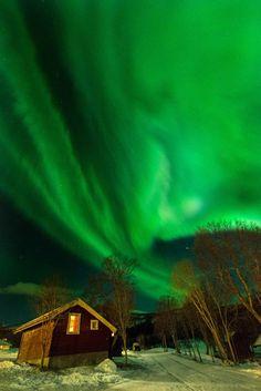 A la caza de la aurora boreal   Álbumes   Ocholeguas   elmundo.es