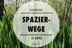 In und um Hamburg kannst du eines auf jeden fall sehr gut: einen Spaziergang machen. Wir haben für dich 11 schöne Spazierwege und –strecken zusammengestellt.