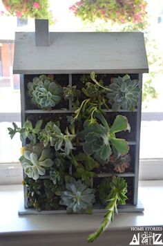 """House Shaped Planter  Beth at Home Stories A to Z built her own little house for planting succulents. Adorable! It gives a whole new meaning to """"house plants""""."""