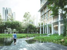 Image 1 of 21. The waterscape in the precinct is one of its distinct characteristics, where residents are able to get in close proximity with different habitants.. Image Courtesy of Norm Li for MKPL/Turenscape Team