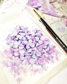 artist Xtina Gavrilova WATERCOLOR PAINT PAINTING DRAW DRAWING FLOWERS FLOWER PINK HYDRANGEA ГОРТЕНЗИЯ PURPLE VIOLET FLORA BOTANICAL ART АКВАРЕЛЬ ЖИВОПИСЬ РИСУНОК РОЗА ЦВЕТЫ