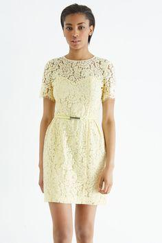 Getailleerde kanten jurk