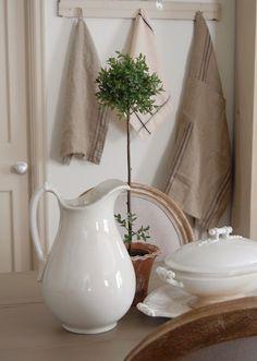 Linen, ironstone, olive tree = must!