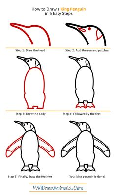 TONS of how to draw stuff! Art Drawings For Kids, Drawing For Kids, Animal Drawings, Cool Drawings, Art For Kids, Penguin Sketch, Penguin Drawing, You Draw, Learn To Draw