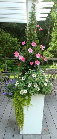 Ideas for flowers summer garden planters Patio Planters, Flower Planters, Flower Pots, Planter Pots, Container Flowers, Container Plants, Container Gardening, Beautiful Gardens, Beautiful Flowers