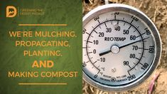 Greening the Desert: We're Mulching Pits, Propagating, Planting, and Making Compost