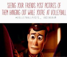 toy story/ volleyball humor