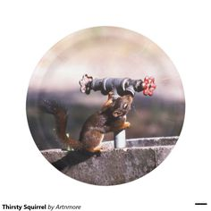 Thirsty Squirrel 7 Inch Paper Plate