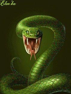 1470584619_276.gif (240×320) Snake Gif, Animation, Gifs, Animals, Animais, Animales, Animaux, Presents, Animal