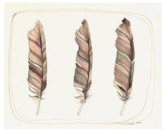 Arte de la pluma / / tres plumas