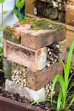 Bug hotel made from bricks and bamboo - © Lee Avison/GAP Pho.- Bug hotel made from bricks and bamboo – © Lee Avison/GAP Photos Bug hotel. Inse… Bug hotel made from bricks and bamboo – © Lee Avison/GAP Photos Bug hotel. Insect home. Garden Crafts, Garden Projects, Garden Art, Diy Garden, Glow Garden, Garden Drawing, Earthship, Back Gardens, Outdoor Gardens