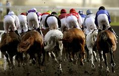 Jockeys compete in the Dubai Kahayla Classic horse race at the Dubai World Cup, the world's richest horse race with a prize money of 10 million US dollars.