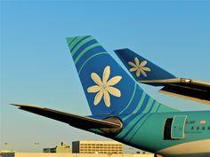 Air Tahiti, Tahiti Nui, South Pacific, Pacific Ocean, Fly Air, Automobile, Aircraft, The Incredibles, Australia