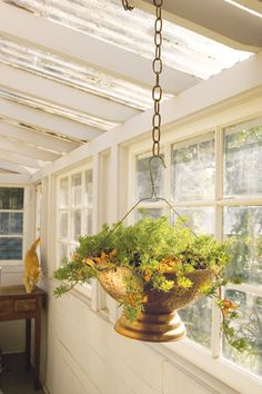 Old colanders and a wire coat hanging make up this hanging basket.