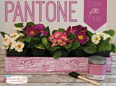 Color of the Year - Pantone Radiant Orchid | TodaysCreativeBlog.net