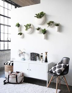 10 new ideas for amazing, out-of-the-box wall stories without using any picture frames at all.: Plants