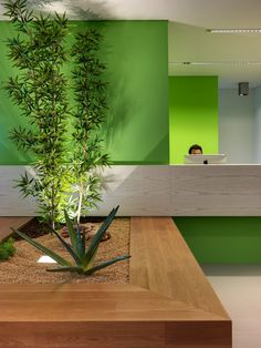 Barra&Barra Office - Reception Desk / Damilano Studio Architects - Centallo (CN), Piemonte, Italy