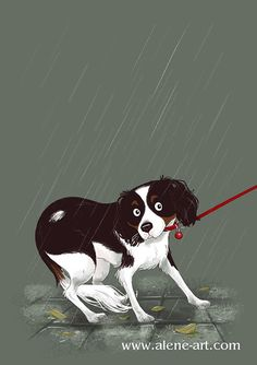 Alene Illustration: But it's RAINING.... by Alison Mutton | www.alene-art.com | This is part of a series of pictures of my dog Myrna - she's a cavoodle, and the current subject of my Colour Collective sketches on twitter. This was for 'Velvet Clover' which made me think of the rain - Myrna doesn't like walking in it! #art #drawing #petportrait #pets #dogs #childrensillustration #kidlitart #rain