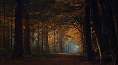 The endless road by Jan Paul  Kraaij on 500px