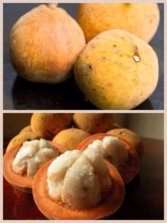 Santol fruit; The ripe fruits are harvested by climbing the tree and plucking by hand, alternatively a long stick with a forked end may be used to twist the fruits off. The pulp is eaten raw and plain or with spices added. It is also cooked and candied or made into marmalade. Grated pulp is cooked in coconut milk (with bits of pork and hot pepper) and served as a dish in Bicol, Philippines. Santol seeds are inedible and may cause complications such as intestinal perforation if swallowed… Filipino Food, Filipino Recipes, Weird Fruit, Ripe Fruit, Exotic Fruit, Eating Raw, Stuffed Hot Peppers, Pinoy, Swallow