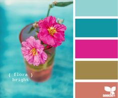 Design Seeds®: For All Who Love Color