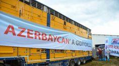 Devriye Haber : Kırklareli'den Azerbaycan'a Gebe Düve İhracatı