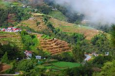 15 PH Destinations to Visit this 2015 Banaue, Falling In Love Again, Great Wall Of China, Amazon Rainforest, Flower Farm, Yahoo News, Vacation Spots, Backpacker, Places To See