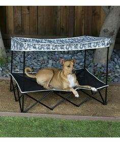 Look at this #zulilyfind! Digital Camo Quik Shade Large Instant Pet Shade with Mesh Bed #zulilyfinds - My boys need this!