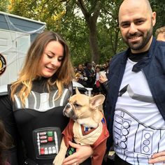 Halloween isn't just for humans — it's a time to get your dog in the spirit, too. We have rounded up some adorable dog costumes that you can totally