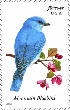 Songbird Stamps | Audubon Magazine  Courtesy of USPS