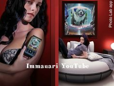 Immauari YouTube #bully #animals #immauari #american bully #nature #animals lover #abkc #bullylove #bestfriend #cani #chien #animals #viaggio #top