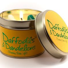 Lily Flame Daffodils and Dandelions Tin, Yellow, l x w x h Tin Candles, Scented Candles, Candle Jars, Yankee Candles, Daisy, Yellow Candles, Egg Hunt, Daffodils, Dandelions
