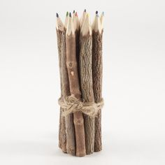 Cost Plus World Market Twig Color Pencils, Set of 12 ($7.99) ❤ liked on Polyvore featuring home, home decor, fillers, backgrounds, accessories, art, brown, stationery, wood home decor and handmade home decor